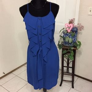 Rachel Roy Blue Ruffle Button Down Dress (B5)
